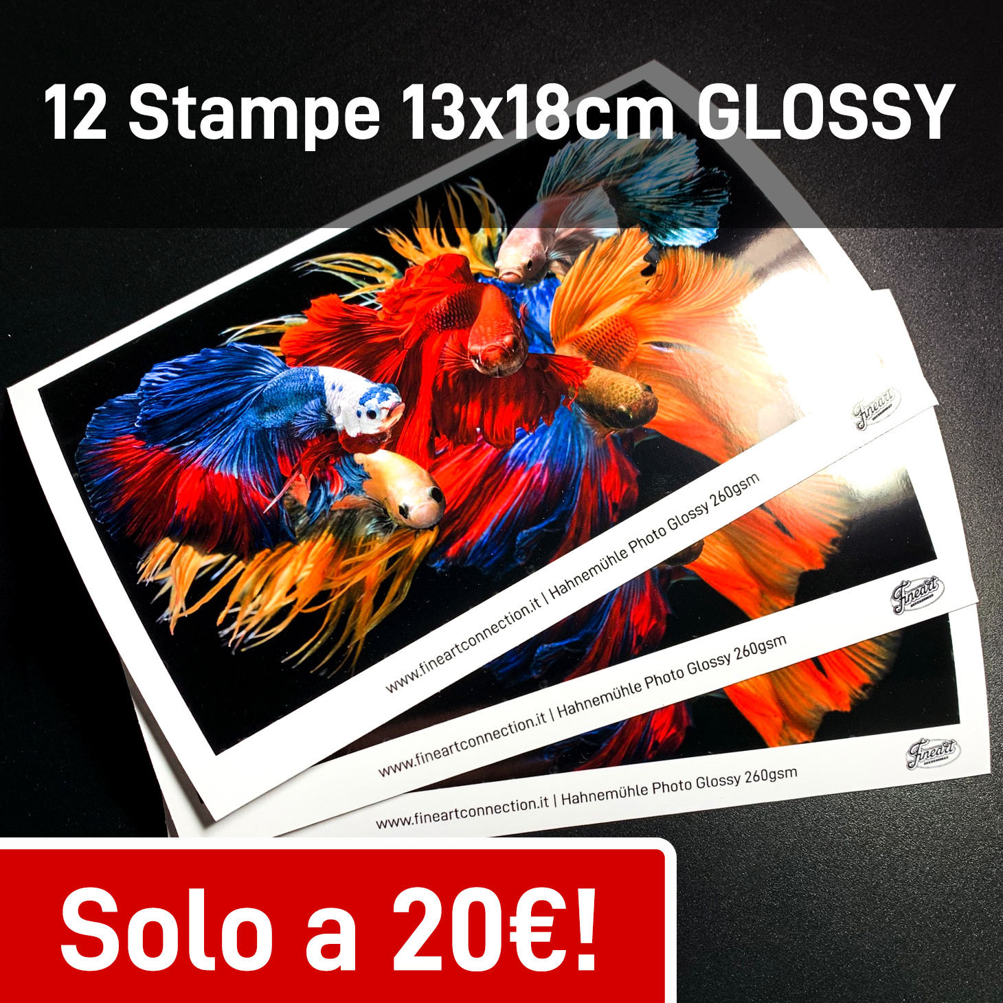 12 stampe 13x18cm Hahnemuhle Glossy 260gsm
